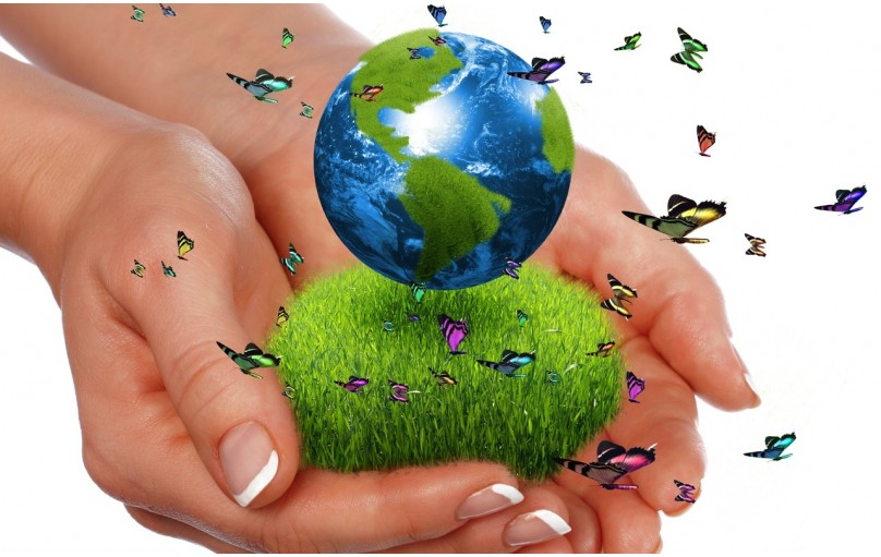 Международная корпорация «GREEN WORLD»